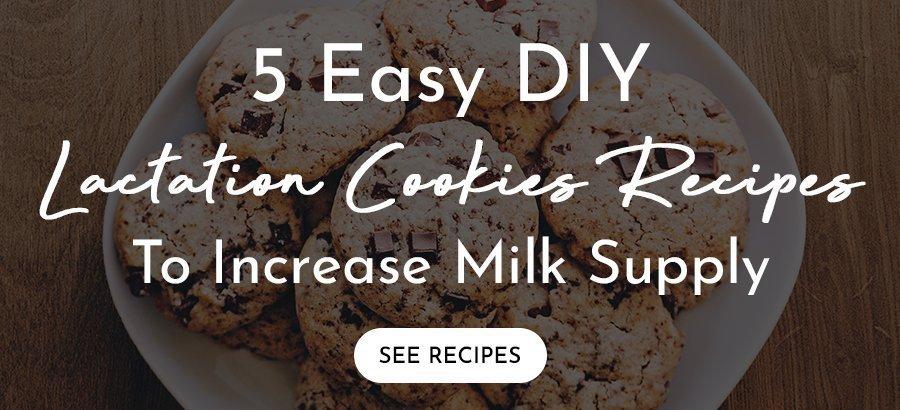 5 Easy DIY Lactation Cookies Recipes To Increase Milk Supply